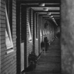 curnock1968-8