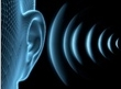 Noise Nuisance Survey